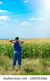 man looking at the corn field
