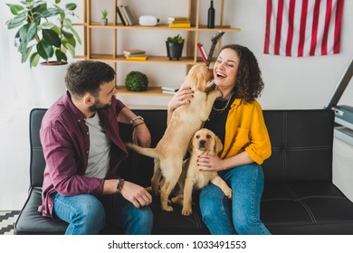 Man looking at girlfriend which holding two labrador puppies