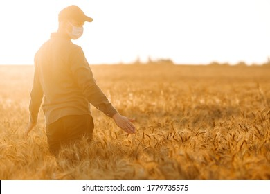 Man  in medical mask with his back to the viewer In a field of wheat touched by the hand of spikes In the sunset light. Agricultural growth and farming business concept. Covid-2019. - Shutterstock ID 1779735575