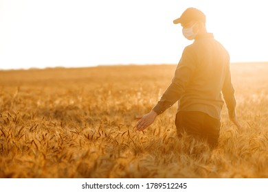 Man in medical mask with his back to the viewer In a field of wheat touched by the hand of spikes during pandemic. Agro business. Harvesting. Covid-2019. - Shutterstock ID 1789512245