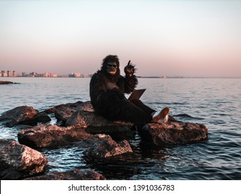 A man in a monkey costume at sunset near the sea works on a computer against the backdrop of a modern skyscraper. Monkey made a surprised face. Primate got the idea
