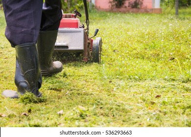 Man mowing the lawn in the backyard of his home