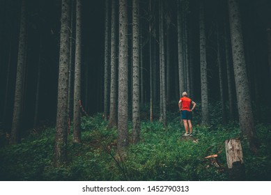 Man and nature. Sportsman in a red shirt stands in a coniferous forest