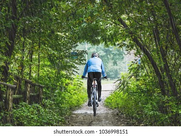 man on a bicycle in the spring season of falling rain