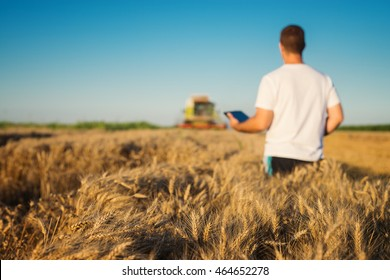 Man on a cornfield holding a tablet.