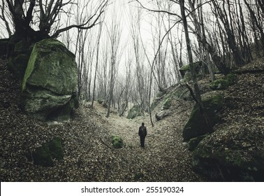 man on dark forest path with twisted trees
