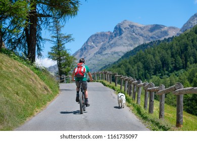 Man on mountain bike on the mountain road in the company of his dog.