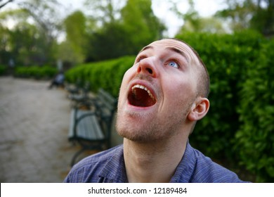 A man on a park bench, he is looking up with extreme excitement.