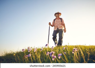 Man on summer meadow with flowers and sky