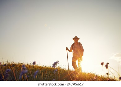 Man on summer meadow with flowers and backlight