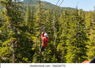Man on zip-line at tree top level