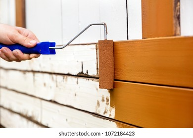 Man painted wooden boards with a bow roller and foam roller. Brown paint is painted or rolled on a wooden wall