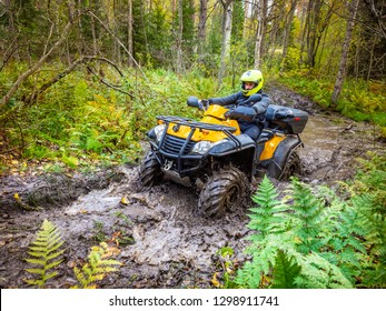 A man paves the route on the phone. ATV. A man rides through the forest on an all-terrain vehicle. Quad bike. In the woods. Trip to the forest on ATV.