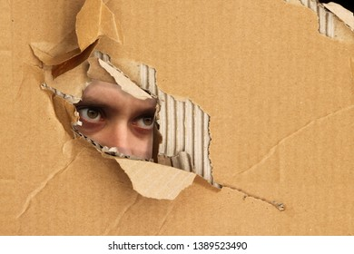A man is peeping, peeping out of a hole in cardboard, the concept of shadowing
