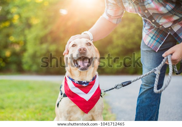 Man pets dog while out for a walk
