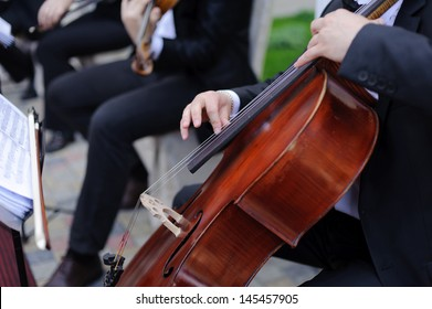 man playing cello in restaurant's yard