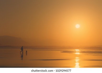 man playing the dog at the beach at sunset