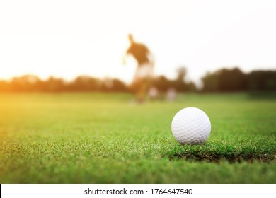 Man playing golf in park on sunny day. Space for design