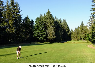 A man playing golf standing on a beautiful green fairway reading to hit his approach shot, surrounded by beautiful large trees and forest, in Campbell river, British Columbia, Canada.