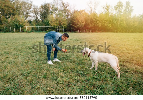 Man playing with his dog labrador in ball in park