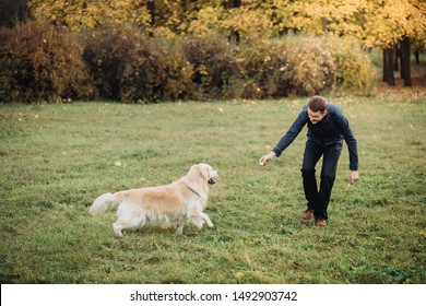 A man playing with his golden retriever in a beautiful autumn park