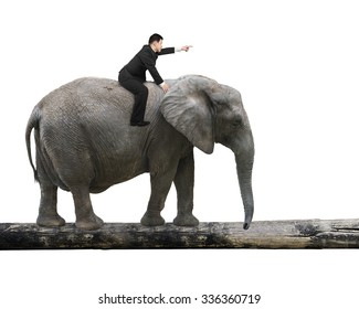Man with pointing finger gesture riding elephant walking on tree trunk, isolated on white.