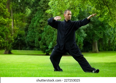 Man practicing tai chi in the park.