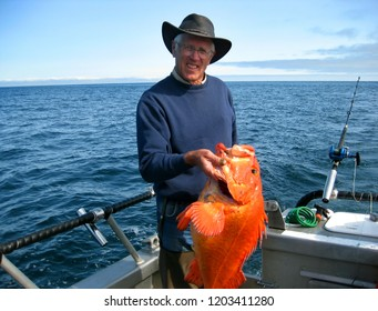 Man proudly holds his orange halibut on a boat in Valdez Bay, Alaska.  He is wearing a hat and navy sweatshirt.