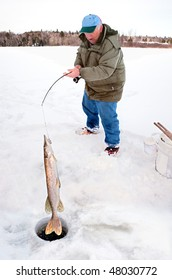Man Pulling a Big Pike From Under the Ice