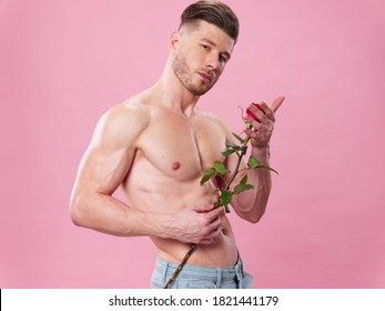 A man with a pumped-up muscular body with a rose in his hands a gift pink background