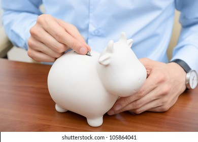 Man puts a penny in a cow bank. Savings money concept.