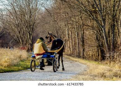 Man and Racing Surrey and Horse