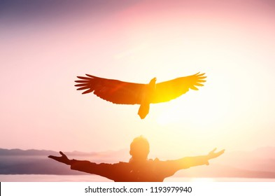 Man raise hand up at beach and sunset sky with eagle bird fly abstract background. Copy space freedom travel adventure and business victory concept. Vintage tone filter effect color style.