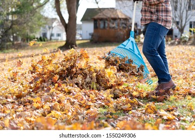 Man raking the backyard on an autumn day