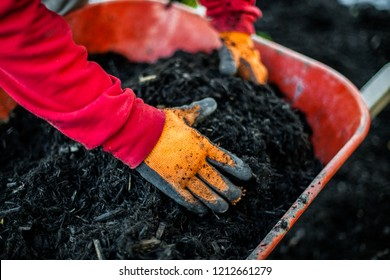 Man with red shirt and orange working gloves is grabbing mulch inside of a red wheelbarrow. Collection that highlights the various landscaping tools, seasonal jobs and tasks.