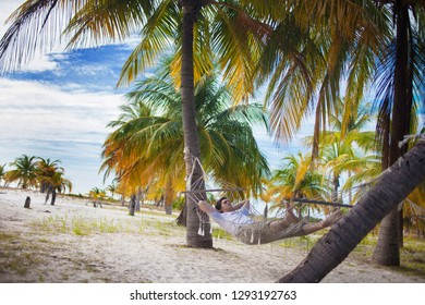 Man relax on the beach in hammock, with palm trees