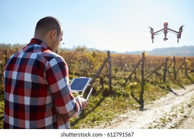 Man remote control flying drone over vineyard