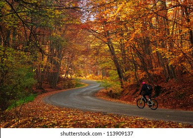 Man riding a bike on a curved road in autumn scenary / Autumn bike riding