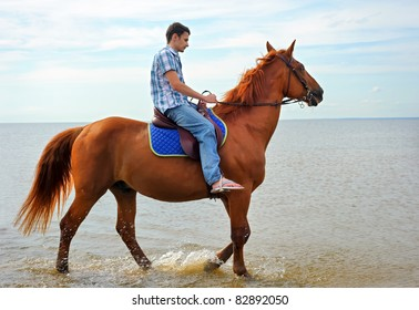 Man riding on a brown horse in a motion