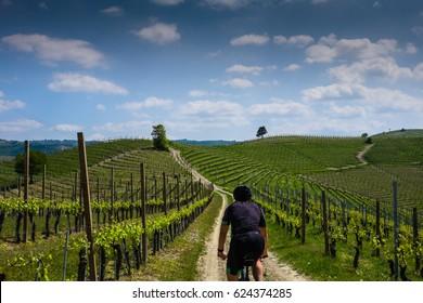Man riding on a mountain bike on Langhe hills