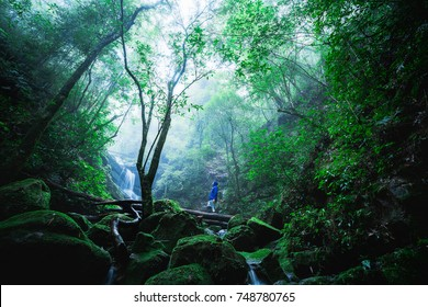 Man roaming in the deep forest of Phu Soi Dao , Uttaradit , Thailand.