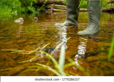 A man in rubber boots is standing in a forest river. Crossing over the creek. Waterproof shoes. Outdoor activities, fishing, hunting and hiking.