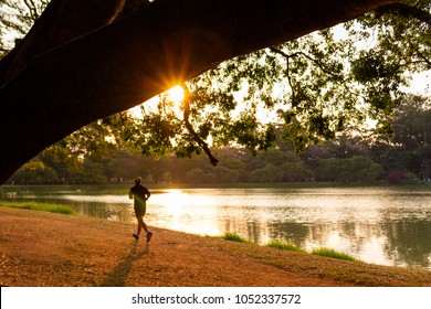 Man running by the lake at Ibirapuera Park, Sao Paulo, Brazil. Beautiful sunlight in the afternoon. Panoramic landscape, idyllic environment. Sunset time, golden hour