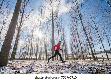 Man running in a forest on the snow in a winter day