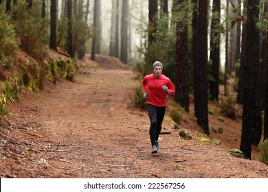 Man running in forest woods training and exercising for trail run marathon endurance race. Fitness healthy lifestyle concept with male athlete trail runner.