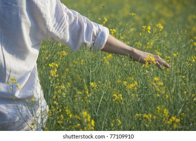 Man running his hand through some flowers in a field