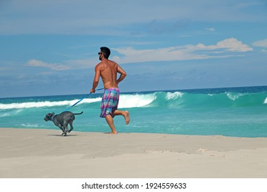 man running on the beach with his pit bull dog. Sunny day, with blue sky and crystal clear sea.