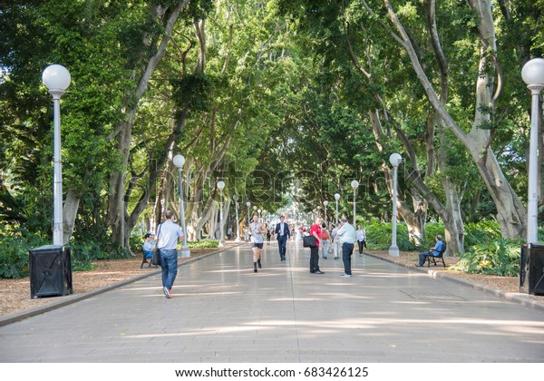Man running through Hyde Park with other people in Sydney, Australia/Running Hyde Park/SYDNEY,NSW,AUSTRALIA-NOVEMBER 18,2016: People walking and running in Hyde Park with fig trees in Sydney,Australia