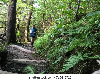 man runs through lush green forest on the Appalachian trail, Tennessee, USA.