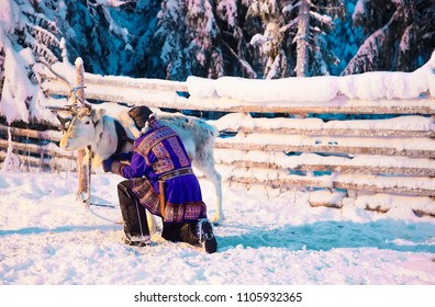 Man in Saami traditional garment at Reindeer in Winter Snow Forest at Finnish Farm in Rovaniemi, Finland, Lapland at Christmas. At the North Arctic Pole.